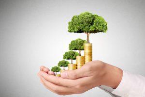 IPOを目指す会社が考えるべき資本政策とエクイティファイナンス